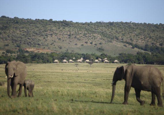 Kichwa_Tembo_Lodge